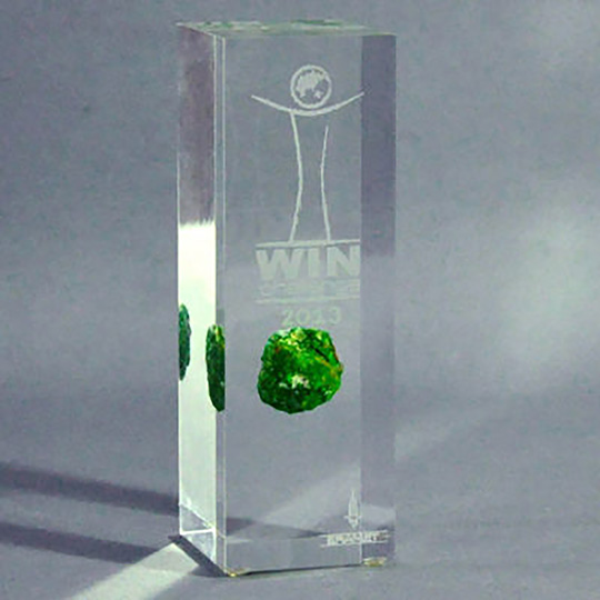 Trophée Plexiglass Inclusion - Win